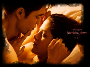 2011 Twilight Saga Breaking Dawn Part1