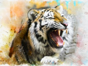 Tiger Splash Art 4K