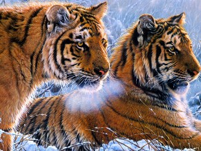 Tigers Oil paint 4K