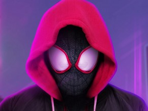 Miles Morales Spider Man Into the Spider Verse