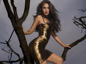 Megan Fox Latest 2010