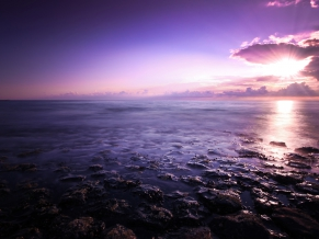 Purple Seascape