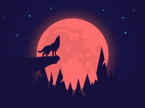 Howling Wolf Night Moon 4K